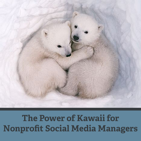 The Power of Kawaii for Nonprofit Social Media Managers