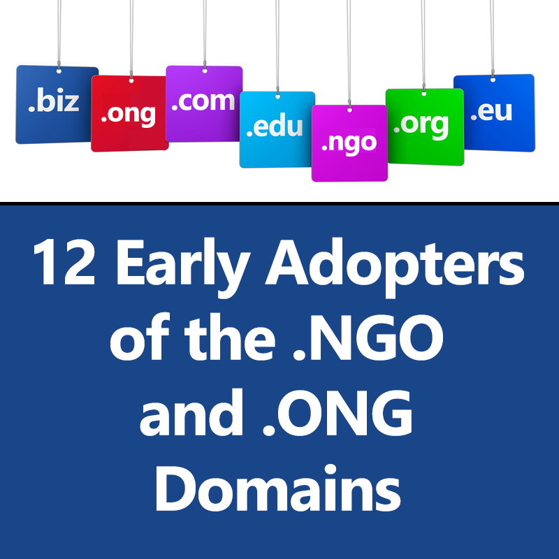 12 Early Adopters of the .NGO and .ONG Domains