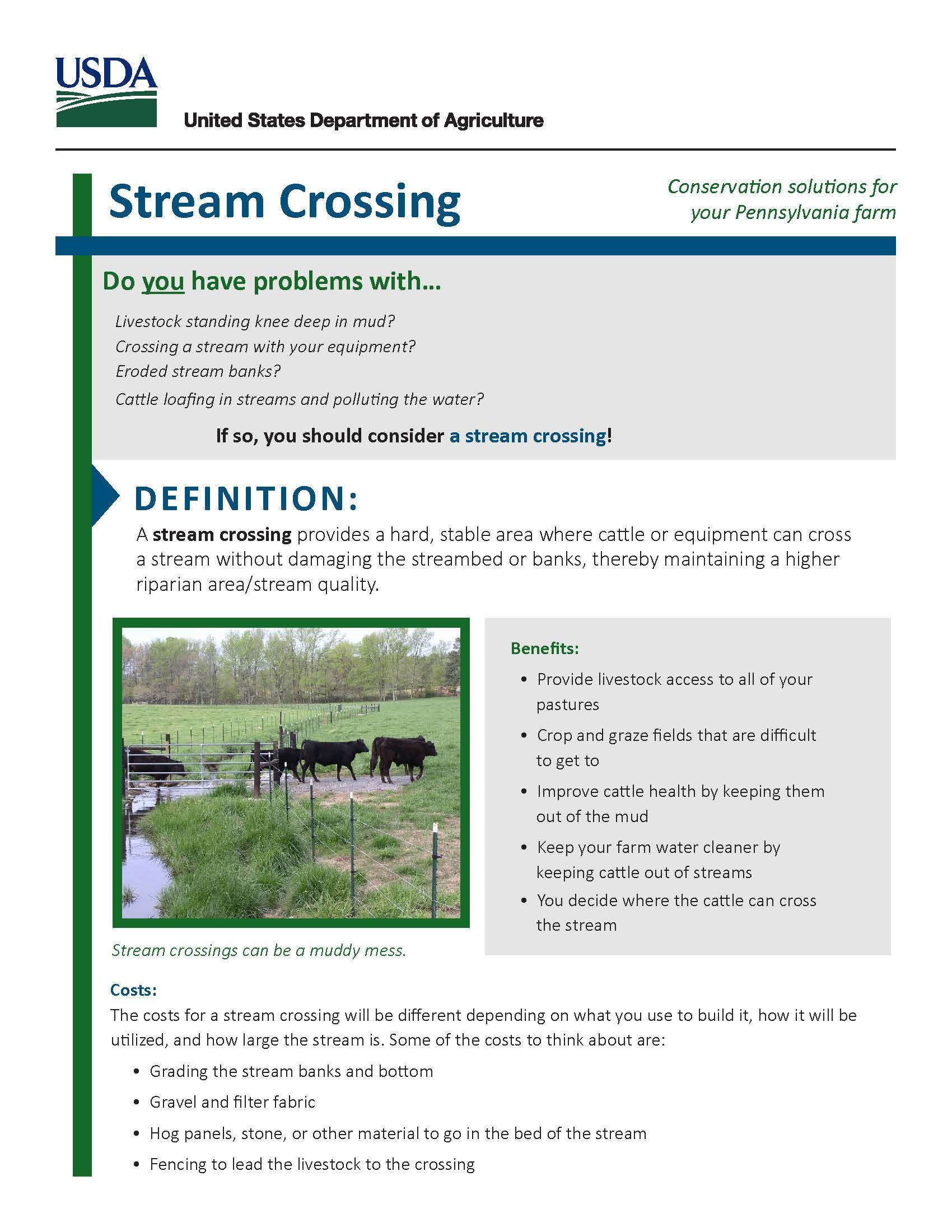 Grazing And Pasture Management