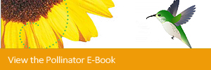 View the Pollinator E-Book