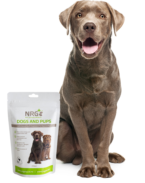 Omega  Per Day Dog