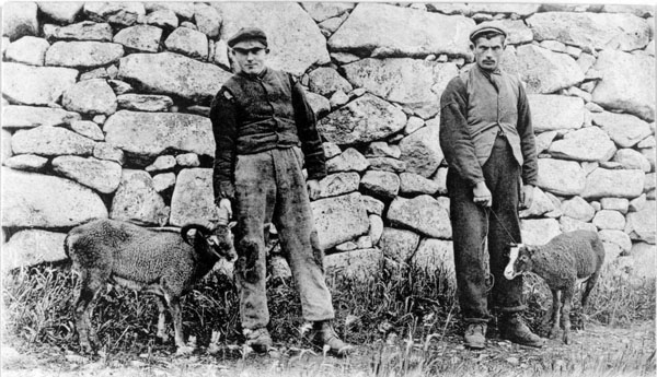 Sheep farmers on the island of Boreray in St Kilda
