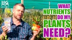 What is NPK fertiliser
