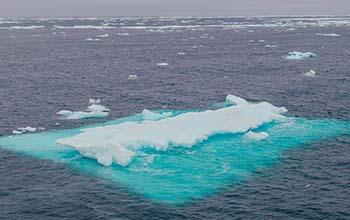 Arctic Ocean sea ice