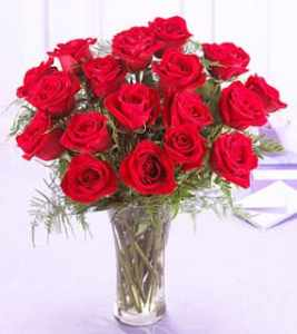 الورود أرق ما بالكون لماذا هذا