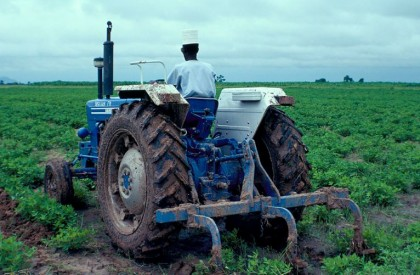 Three Hundred Thousand Farmers Benefit From BOA Loan Schemes
