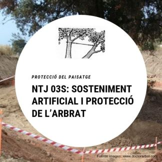 NTJ 03S SOSTENIMENT ARTIFICIAL I PROTECCIÓ DE L'ARBRAT