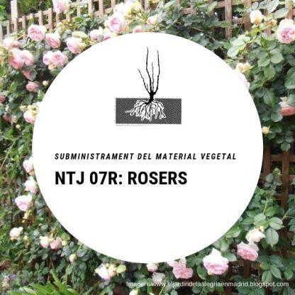 NTJ 07R ROSERS