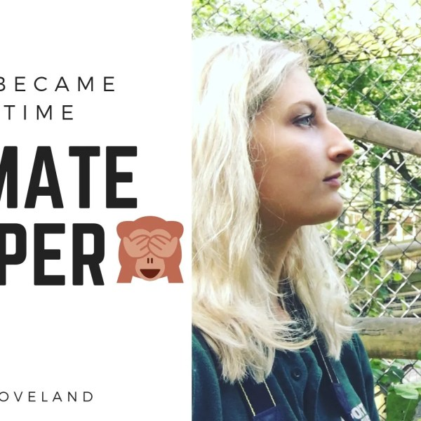 Katie Loveland: How I became a full-time trainee primate keeper
