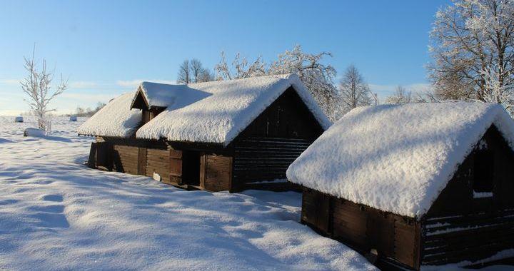 Ziemas saulgriežu skoliņa Pastariņa muzejā /FOTO/