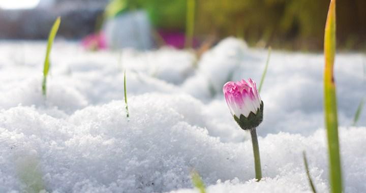 Lai mums visiem izdodas nenogulēt pavasara atmodu