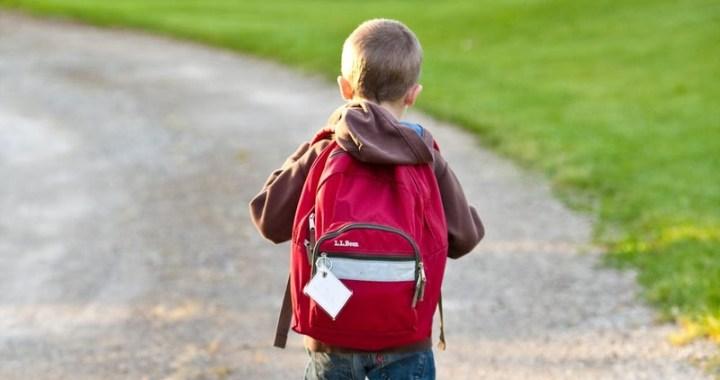 Vai tiešām bērni nedrīkst iet uz skolu?