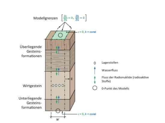 Abbildung 3: Wasser- und Radioisotopen-Fluss im modellierten Kompartiment der Geosphäre. Der Fluss erfolgt entweder von unten nach oben, oder von oben nach unten (Nagra 2014, Fig. 5-2, Übersetzung Englisch-Deutsch)