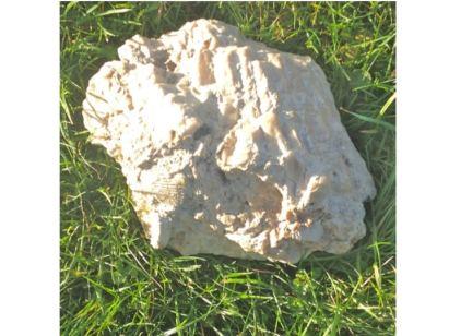 Figur 2: Gesteinsbrocken mit versteinerten Korallen und Muscheln aus dem massiven Malmkalk. Der Durchmesser des Specimens beträgt um 20 cm. Die Probe stammt aus dem Zufahrtsbereich des Felslabors Mont Terri in St Ursanne, wo äusserst reiner Kalk während Jahrzehnten zu industriellen Zwecken abgebaut wurde. [4]