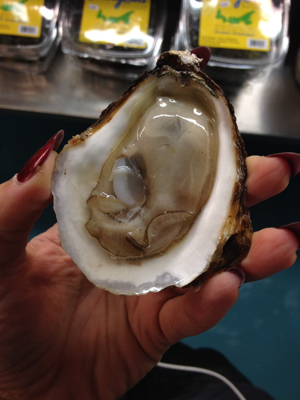 Cascumpec Bay Oyster Montreal La Mer wet delicious