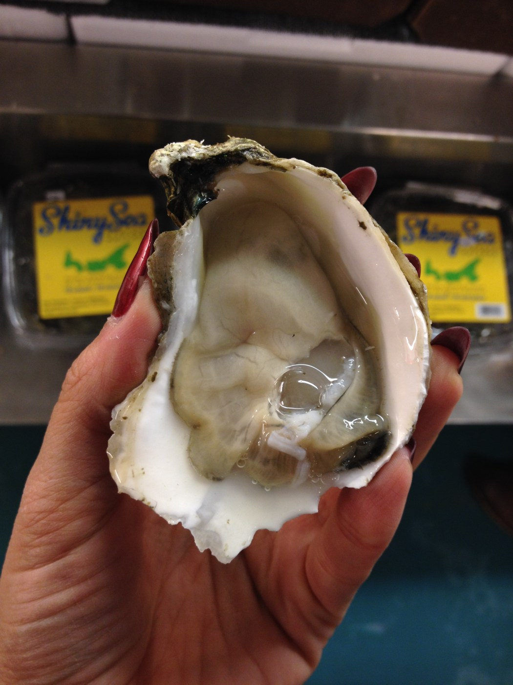 Oyster Raw seafood Montreal Fish Market