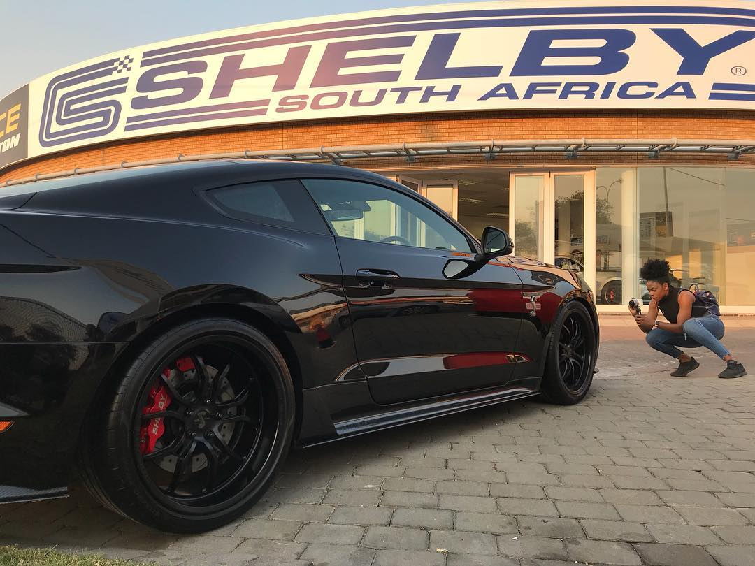 Shelby South Africa
