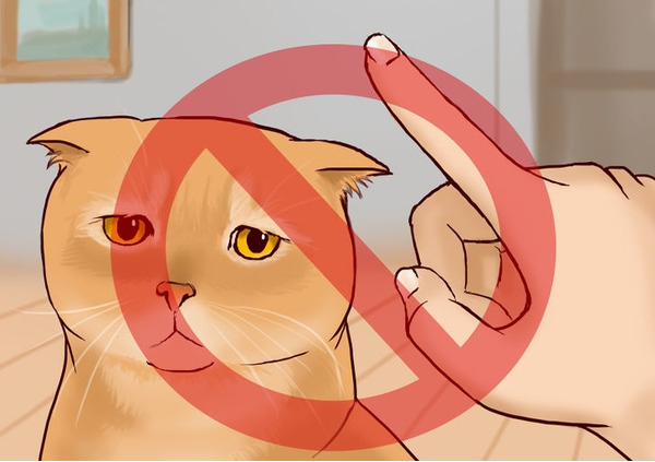 Niet nodig om een kat, negatieve associatie te scoren