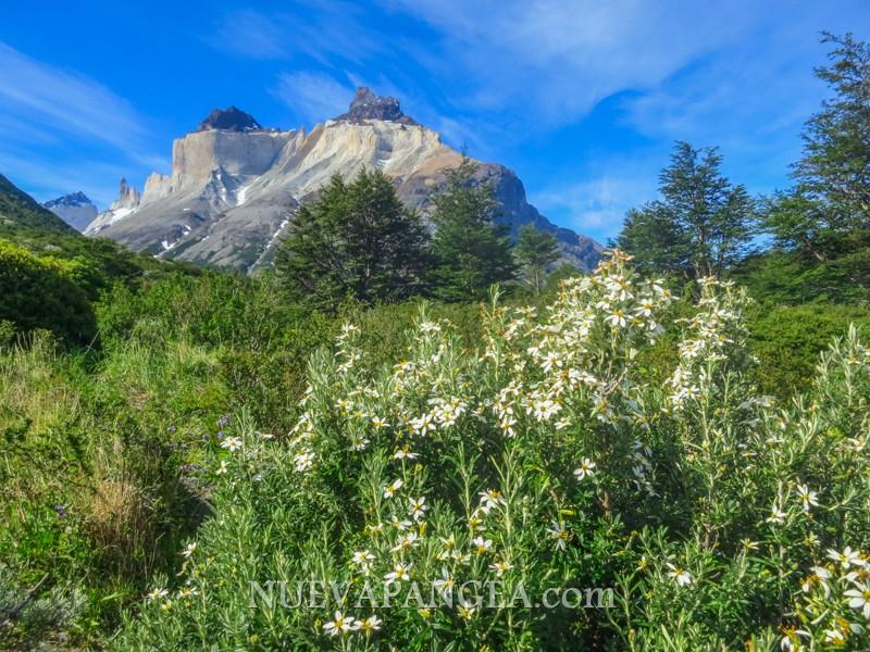 Torres del Paine - Patagonia en su máxima expresión