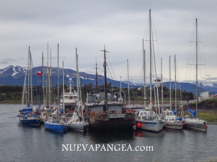 NP_Patagonia2012-268