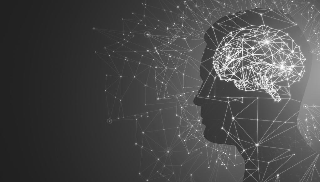 Cerebros digitales: la neurociencia del aprendizaje
