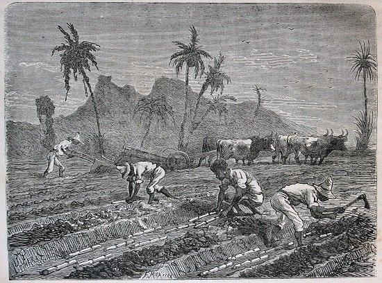 esclavos2