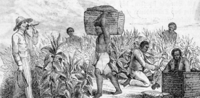 esclavos 4