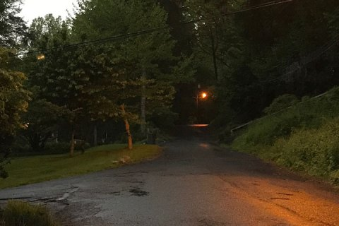 Rain clouds overhead, dark trees barely illuminated in the morning light. A street lamp glows to the right.