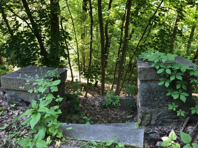 A stone staircase leads to a forested hill.
