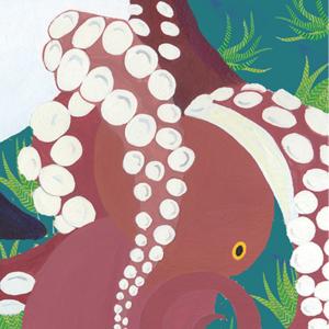 illustrationTOP