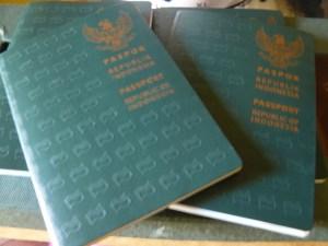 paspor hijau