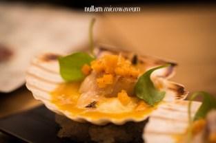Nullam Microwaveum-7456