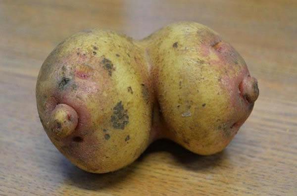 legumes-pervers1