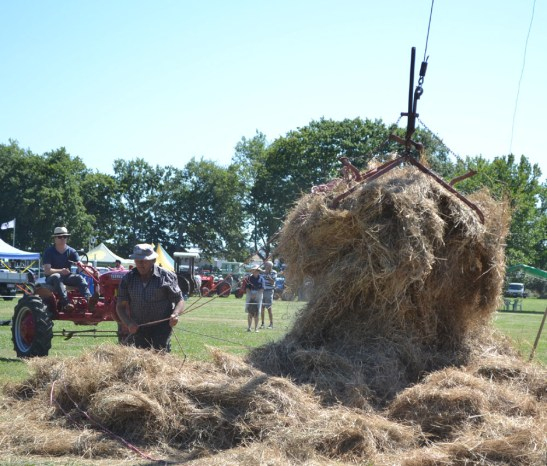 Old fashioned hay making