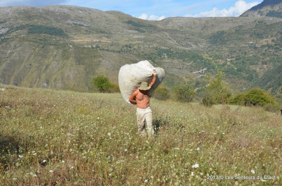 distiller Christophe Cottereau in the high alps of the provence.