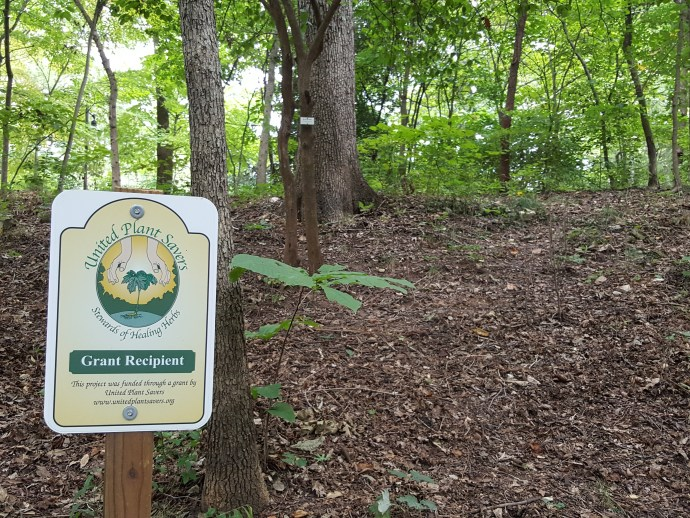 American Ginseng Sanctuary