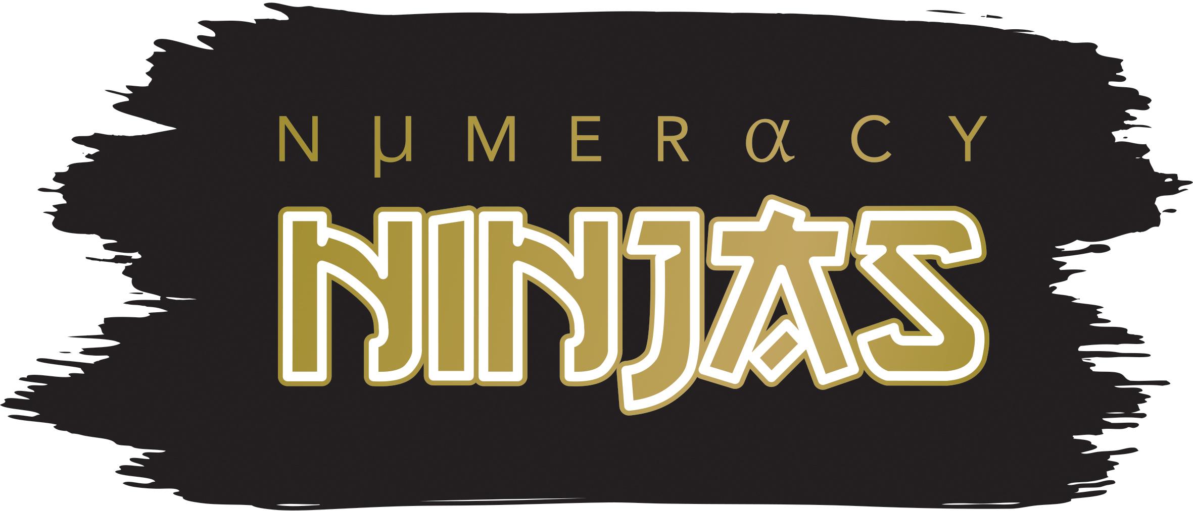 Promotional Materials Numeracy Ninjas