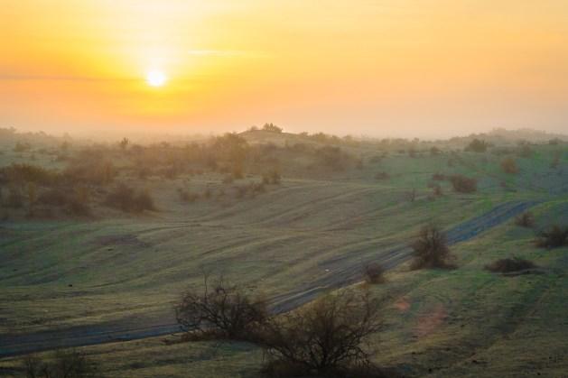 Природа северного Казахстана