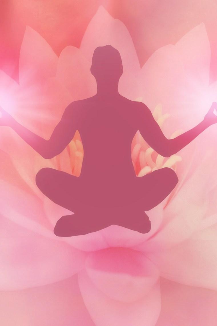 meditácia postavy v lotosovom sede a lotosový kvet v ružovej