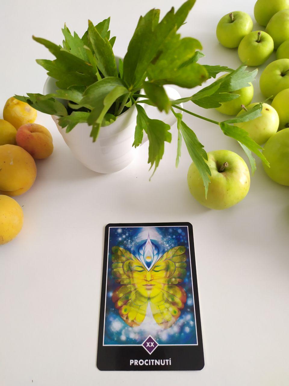 Tarotová karta Osho Zen Tarot XX Precitnutie