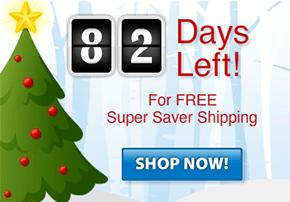 Numinix Holiday Shipping Countdown