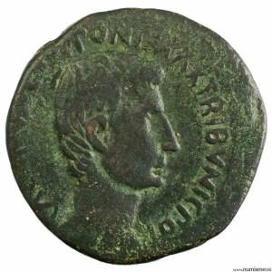 Auguste moyen bronze