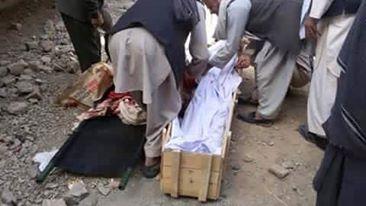 Photo of غزني: بهرنیانو په شپنیو عملیاتو کې د کلي امام او پنځه کلیوال ووژل
