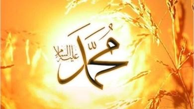 Photo of الرحیق المختوم – نبوي سیرت پښتو – (۸۱مه برخه)