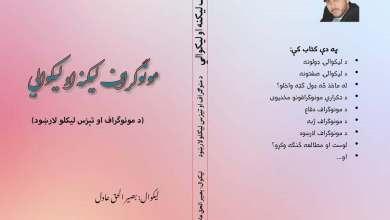 Photo of مونوګراف ليکنه او ليکوالي کتاب چاپ شو