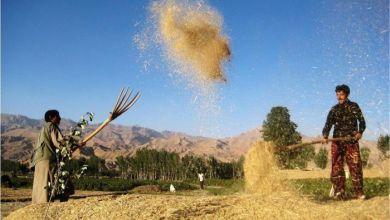 Photo of د اسیا پرمختیايي بانک: افغانستان به په روان کال کې ۲.۵ سلنه اقتصادي وده وکړي