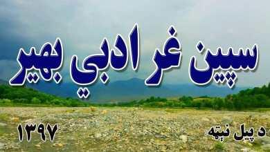 Photo of سپینغر ادبي بهیر د اوونیزې ناستې راپور