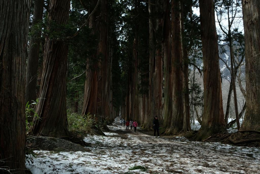 残雪の戸隠神社奥社