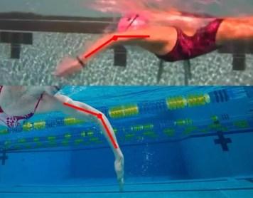 Nuoto: Imparare Farfalla gomito alto