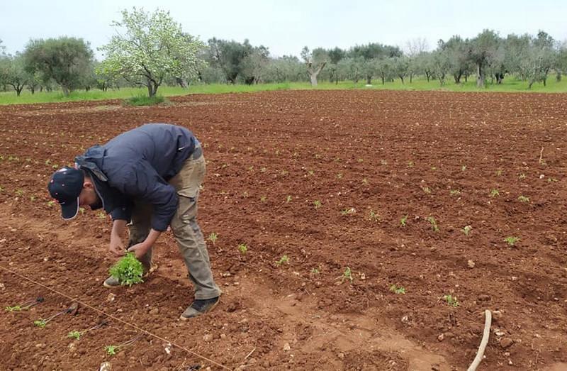 Casa delle AgriCulture, società solidali